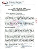 Báo cáo tài chính năm 2012 (đã kiểm toán) - CTCP Dược phẩm Agimexpharm