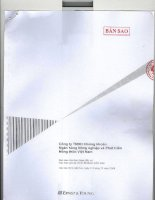 Báo cáo tài chính năm 2008 (đã kiểm toán) - Công ty Cổ phần Chứng khoán Nông nghiệp và Phát triển Nông thôn