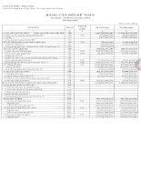 Báo cáo tài chính hợp nhất quý 4 năm 2014 - Công ty Cổ phần Nam Việt