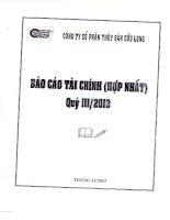 Báo cáo tài chính hợp nhất quý 3 năm 2013 - Công ty Cổ phần Thủy Sản Cửu Long