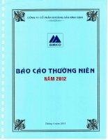 Báo cáo thường niên năm 2012 - Công ty cổ phần Khoáng sản Bình Định