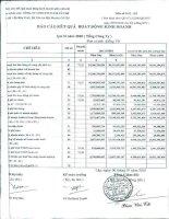 Báo cáo KQKD quý 2 năm 2010 - Công ty Cổ phần Đầu tư Phát triển Công nghiệp - Thương mại Củ Chi