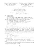 Báo cáo thường niên năm 2012 - Công ty Cổ phần Chế tạo Biến thế và Vật liệu điện Hà Nội