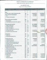 Báo cáo tài chính công ty mẹ quý 3 năm 2012 - Công ty Cổ phần Đầu tư Alphanam