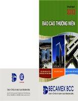 Báo cáo thường niên năm 2010 - Công ty Cổ phần Xây dựng và Giao thông Bình Dương