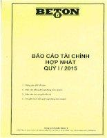 Báo cáo tài chính hợp nhất quý 1 năm 2015 - Công ty Cổ phần Beton 6