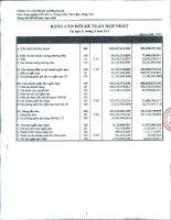 Báo cáo tài chính hợp nhất quý 4 năm 2011 - Công ty Cổ phần Đầu tư Alphanam