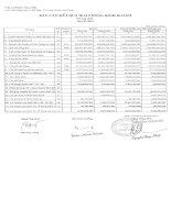 Báo cáo tài chính hợp nhất quý 2 năm 2014 - Công ty Cổ phần Nam Việt