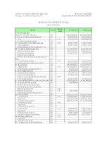 Báo cáo tài chính quý 1 năm 2011 - Công ty Cổ phần Thủy sản Bạc Liêu