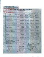 Báo cáo KQKD quý 4 năm 2010 - Công ty Cổ phần Chiếu xạ An Phú