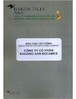 Báo cáo tài chính năm 2010 (đã kiểm toán) - Công ty Cổ phần Khoáng sản Becamex