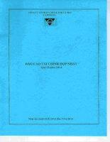 Báo cáo tài chính hợp nhất quý 2 năm 2014 - Công ty Cổ phần Chế biến và Xuất nhập khẩu Thuỷ sản Cà Mau