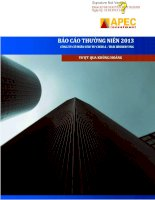 Báo cáo thường niên năm 2013 - Công ty Cổ phần Đầu tư Châu Á - Thái Bình Dương