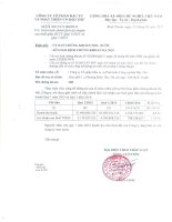 Báo cáo tài chính quý 1 năm 2015 - Công ty cổ phần Đầu tư và Phát triển Công nghiệp Bảo Thư