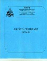 Báo cáo tài chính hợp nhất quý 3 năm 2014 - Công ty Cổ phần Xuất nhập khẩu Thủy sản An Giang