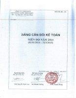 Báo cáo tài chính năm 2014 - Công ty cổ phần Cấp thoát nước Bình Định