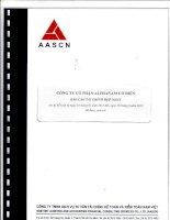 Báo cáo tài chính hợp nhất quý 2 năm 2013 (đã soát xét) - Công ty Cổ phần Alphanam E&C
