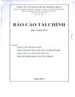 Báo cáo tài chính quý 1 năm 2013 - Công ty Cổ phần Chứng khoán BETA