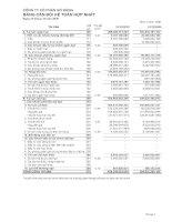 Báo cáo tài chính hợp nhất quý 4 năm 2010 - Công ty Cổ phần Gò Đàng
