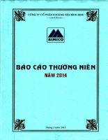 Báo cáo thường niên năm 2014 - Công ty cổ phần Khoáng sản Bình Định