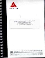Báo cáo tài chính hợp nhất quý 2 năm 2013 (đã soát xét) - Công ty Cổ phần Đầu tư Alphanam