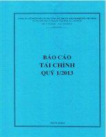 Báo cáo tài chính công ty mẹ quý 1 năm 2013 - Công ty cổ phần Đầu tư Hạ tầng Kỹ thuật T.P Hồ Chí Minh