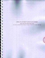 Báo cáo tài chính hợp nhất năm 2011 (đã kiểm toán) - Công ty Cổ phần Alphanam E&C