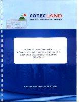 Báo cáo thường niên năm 2012 - Công ty Cổ phần Đầu tư và Phát triển Nhà đất COTEC