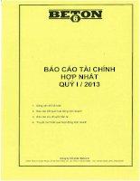 Báo cáo tài chính hợp nhất quý 1 năm 2013 - Công ty Cổ phần Beton 6