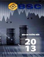 Báo cáo thường niên năm 2013 - Công ty cổ phần Chứng khoán Ngân hàng Đầu tư và Phát triển Việt Nam