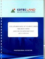 Báo cáo tài chính hợp nhất quý 4 năm 2014 - Công ty Cổ phần Đầu tư và Phát triển Nhà đất COTEC