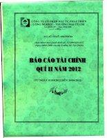 Báo cáo tài chính công ty mẹ quý 2 năm 2012 - Công ty Cổ phần Đầu tư Phát triển Công nghiệp - Thương mại Củ Chi