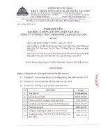 Nghị quyết Đại hội cổ đông thường niên năm 2013 - Công ty cổ phần Thực phẩm Nông sản Xuất khẩu Sài Gòn