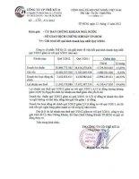 Báo cáo tài chính hợp nhất quý 3 năm 2012 - Công ty cổ phần Thế kỷ 21
