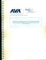 Báo cáo tài chính hợp nhất năm 2013 - CTCP Đầu tư Cảng Cái Lân