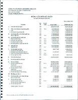 Báo cáo tài chính quý 2 năm 2011 - Công ty Cổ phần Cấp nước Chợ Lớn