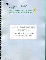 Báo cáo tài chính hợp nhất năm 2014 (đã kiểm toán) - Công ty cổ phần Xây dựng và Nhân lực Việt Nam