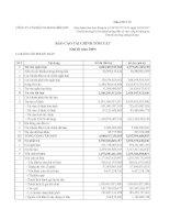 Báo cáo tài chính quý 3 năm 2009 - Công ty Cổ phần Xi măng Bỉm Sơn