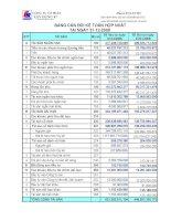 Báo cáo tài chính hợp nhất năm 2008 (đã kiểm toán) - Công ty Cổ phần Xây dựng 47