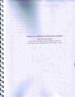 Báo cáo tài chính công ty mẹ quý 2 năm 2011 (đã soát xét) - Công ty Cổ phần Alphanam E&C