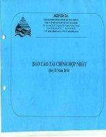 Báo cáo tài chính hợp nhất quý 2 năm 2014 - Công ty Cổ phần Xuất nhập khẩu Thủy sản An Giang