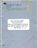Báo cáo tài chính công ty mẹ năm 2012 (đã kiểm toán) - Công ty cổ phần Xây dựng và Nhân lực Việt Nam