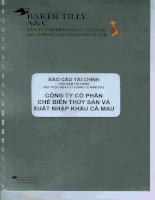 Báo cáo tài chính công ty mẹ năm 2015 (đã kiểm toán) - Công ty Cổ phần Chế biến và Xuất nhập khẩu Thuỷ sản Cà Mau