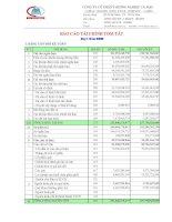 Báo cáo tài chính quý 1 năm 2009 - Công ty Cổ phần Thương nghiệp Cà Mau