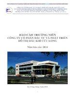Báo cáo thường niên năm 2014 - Công ty cổ phần Đầu tư và Phát triển Đô thị Dầu khí Cửu Long
