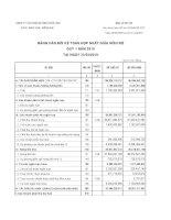 Báo cáo tài chính hợp nhất quý 1 năm 2010 - Công ty Cổ phần Bê tông Biên Hòa