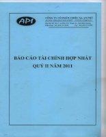 Báo cáo tài chính hợp nhất quý 2 năm 2011 - Công ty Cổ phần Chiếu xạ An Phú