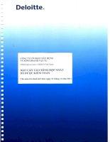 Báo cáo tài chính hợp nhất năm 2011 (đã kiểm toán) - Công ty Cổ phần Xây dựng và Kinh doanh Vật tư