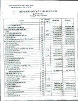 Báo cáo tài chính hợp nhất quý 1 năm 2011 - Công ty Cổ phần Nhựa Bình Minh