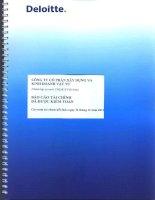 Báo cáo tài chính công ty mẹ năm 2012 (đã kiểm toán) - Công ty Cổ phần Xây dựng và Kinh doanh Vật tư
